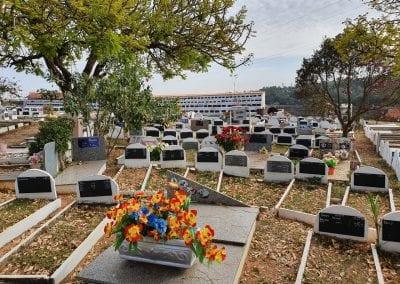 Cemiterio de Animais Botucatu Sepultamento de animais Quadra com lapide 11