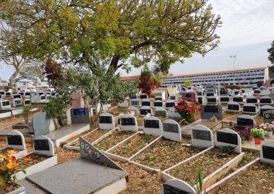 Cemiterio de Animais Botucatu Sepultamento de animais Quadra com lapide 12