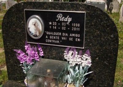 Cemiterio de Animais Botucatu Sepultamento de animais Quadra com lapide 6 1