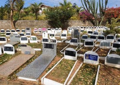 Cemiterio de Animais Botucatu Sepultamento de animais Quadra com lapide 6