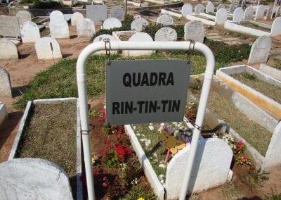 Sepultamento de animais Quadra Rin Tin TIn Cemiterio de Animais Botucatu